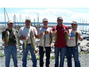 Pêche au doré gang